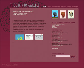 The Brain Unravelled